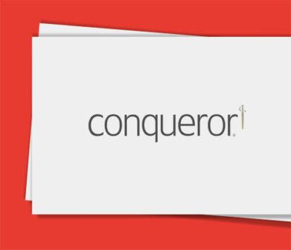 Sonderfarbendruck-Visitenkarten-Conquerer